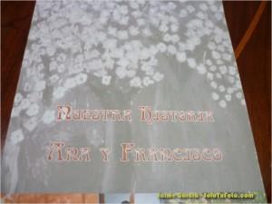 Libro Ana Francisco
